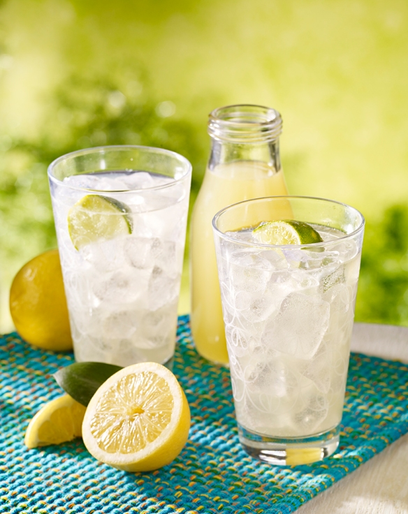 lemonlime_Shrub_drink